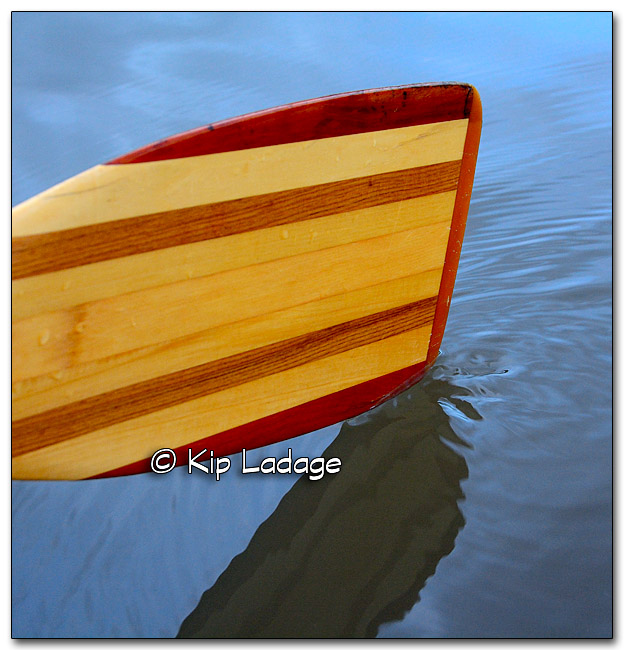 Canoe Paddle in Water - Image 285487