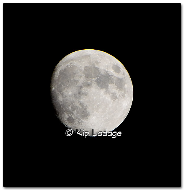 Near Full Moon - Image 287506