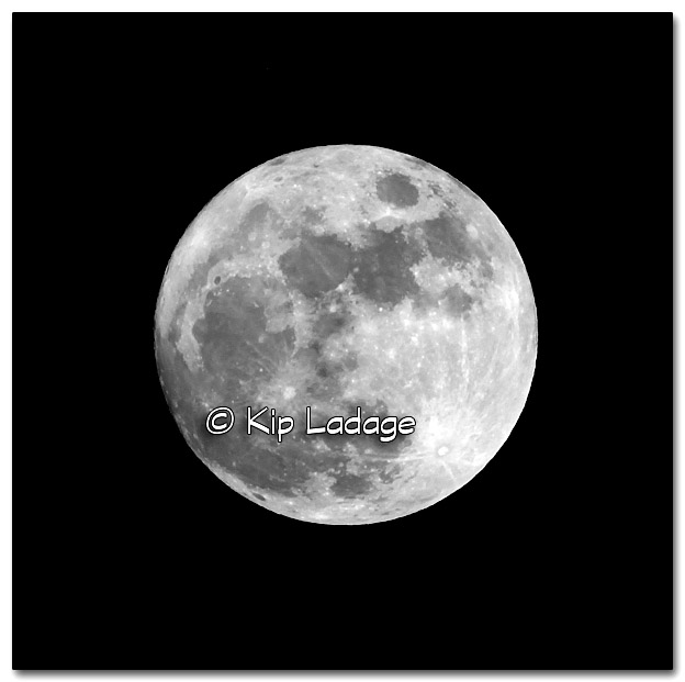 Full Moon - Image 293549