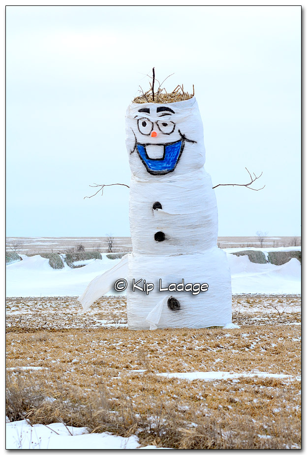 Hay Bale Frosty the Snowman - Image 296471