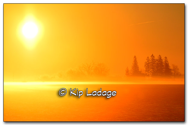 Foggy Winter Sunrise - Image 301510B