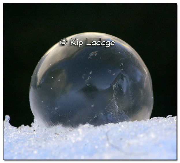 Frozen Bubble - Image 351735