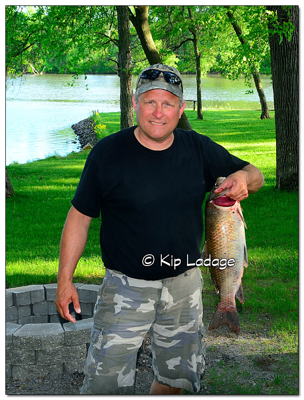 Carp by Bowfishing - Image 381478