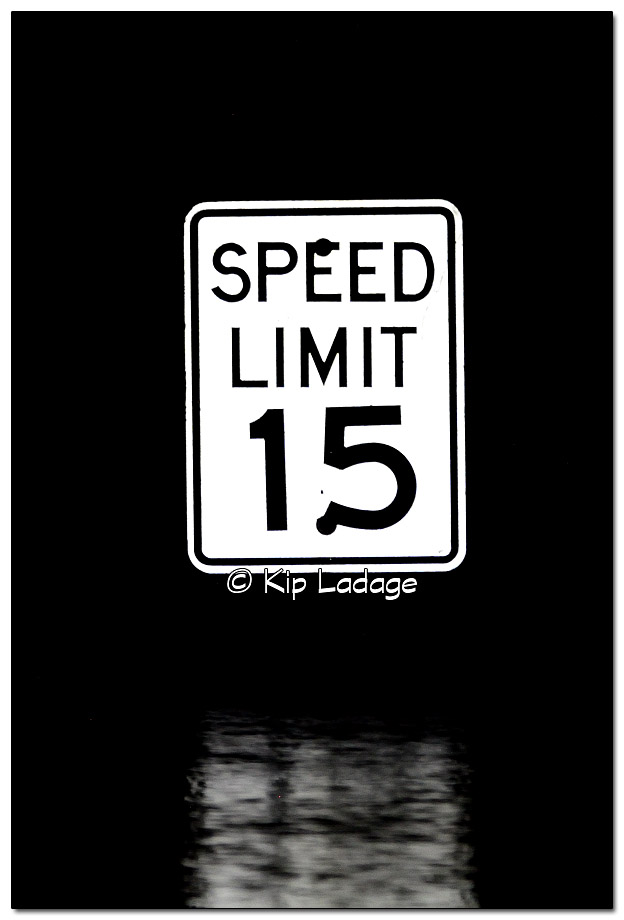 Speed Limit Sign in Flood Water - Image 399221