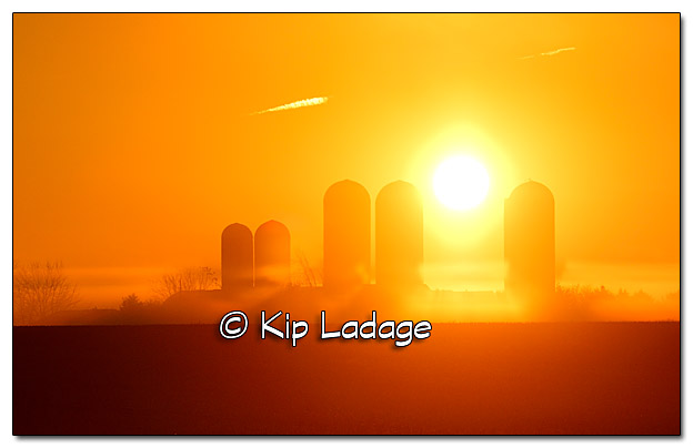Foggy Sunrise in Rural Iowa - Image 405562