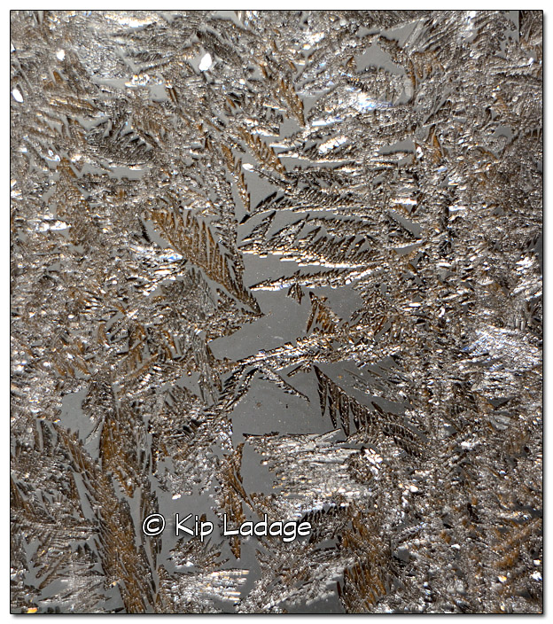 Frost on Glass - Image 410686