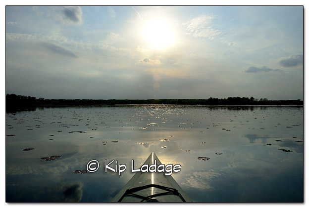 Kayaking at Sweet Marsh - Image 439349 (© Kip Ladage)