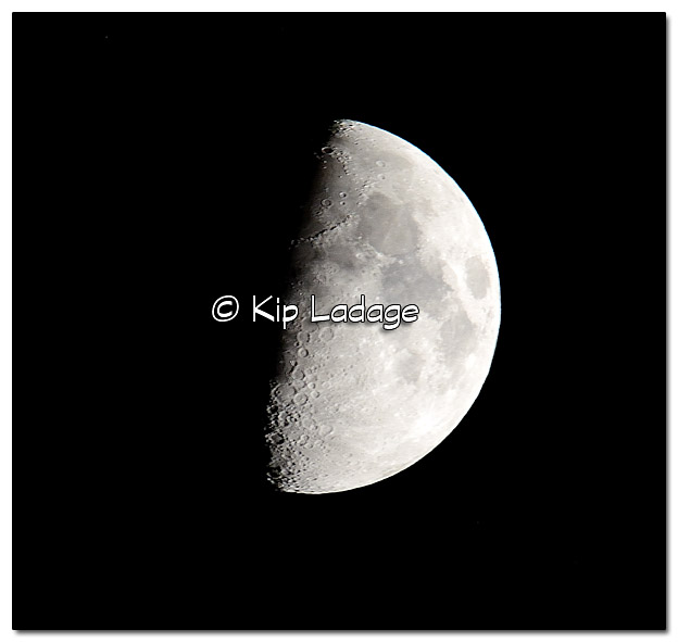 First Quarter Moon (54%) - Image 465905 (© Kip Ladage)