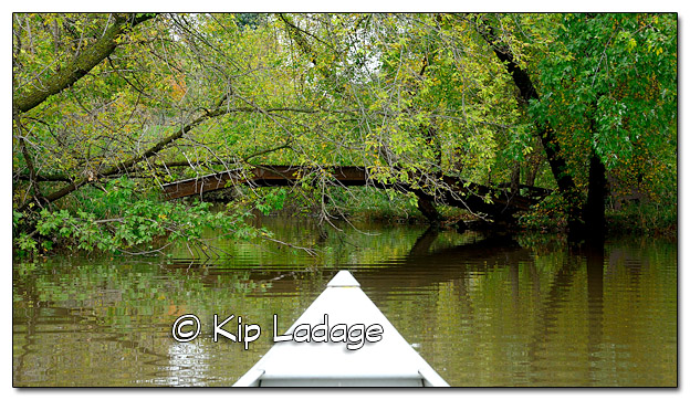 Canoeing on the Wapsipinicon River in Mist - Image 469100 (© Kip Ladage)