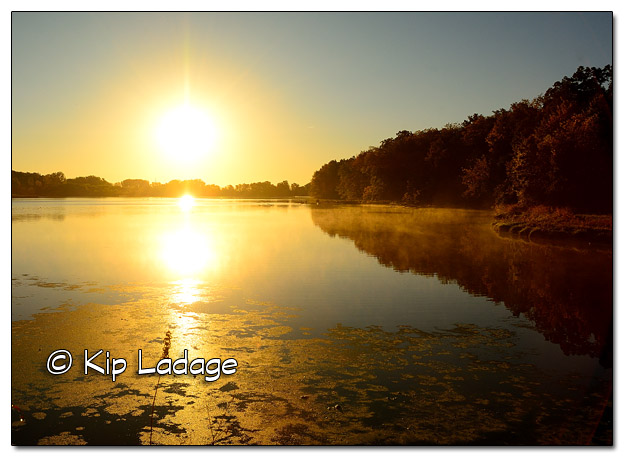 Casey Lake at Hickory Hills Park at Sunrise - Image 468682 (© Kip Ladage)