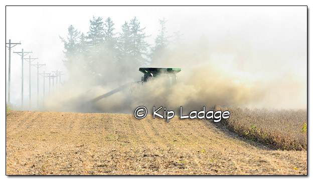 Combining Soybeans With Dust- Image 465946 (© Kip Ladage)
