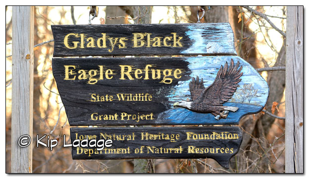 Gladys Black Eagle Refuge Sign - Image 477976 (© Kip Ladage)