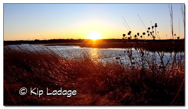 Sweet Marsh Sunset - Image 478713 (© Kip Ladage)