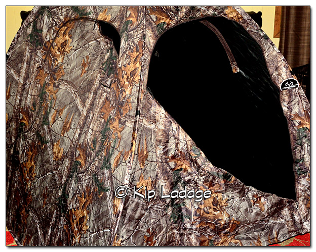 Camo Blind in Living Room - Image 486280 (© Kip Ladage)