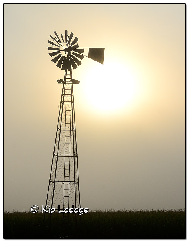 Windmill in Foggy Sunrise - Image 520352 (© Kip Ladage)