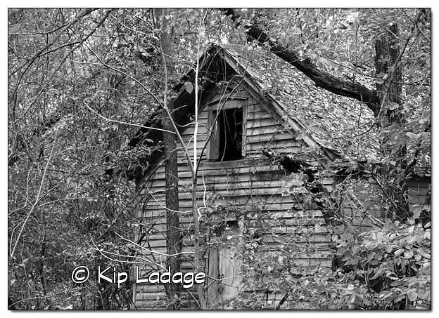 Rustic Building in Timber (Mono) - Image 526567 (© Kip Ladage)