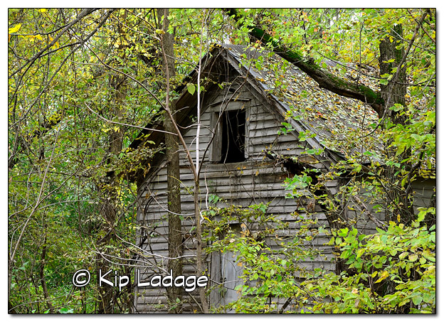 Rustic Building in Timber - Image 526567 (© Kip Ladage)