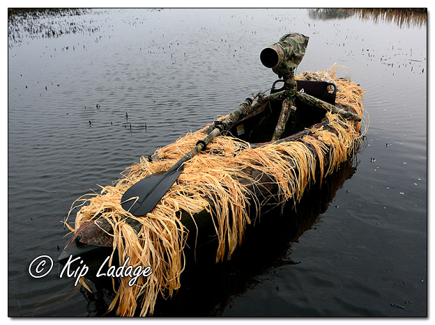 Camo-covered Kayak at Sweet Marsh - Image 559982 (© Kip Ladage)