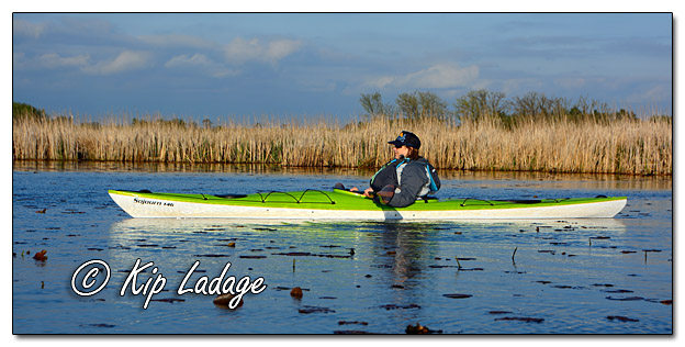 Kayak Paddling at Sweet Marsh - Image 566087 (© Kip Ladage)