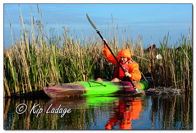 Kayak Paddling at Sweet Marsh - Image 566153 (© Kip Ladage)