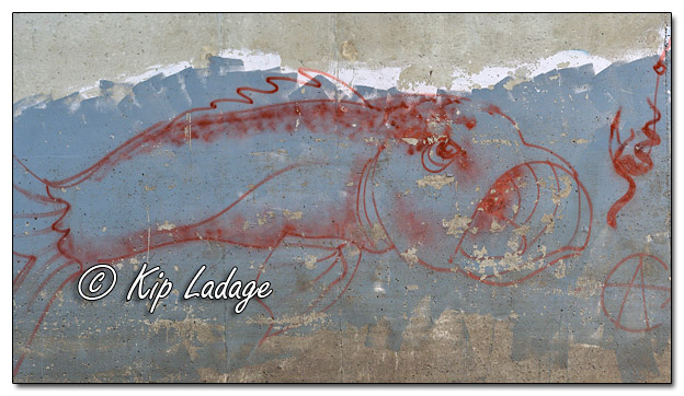 Old Fish Graffiti on Bridge Pier - Image 582598 (©Kip Ladage)