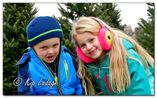 Hide and Seek at Wapsie Pines Christmas Tree Farm - Image DS3_0143 (© Kip Ladage)