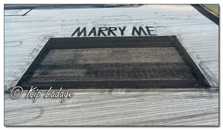 Plowed Marriage Proposal - Image 596233 (© Kip Ladage)