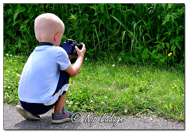Grandson Shooting Wildflower Pictures - Image 640888 (© Kip Ladage)