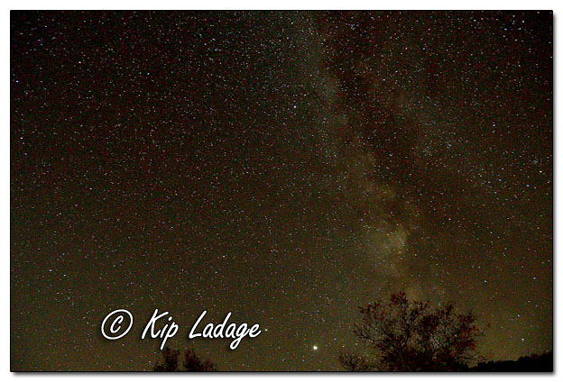 Night Sky at Yellow River State Forest - Image 659268 (© Kip Ladage)