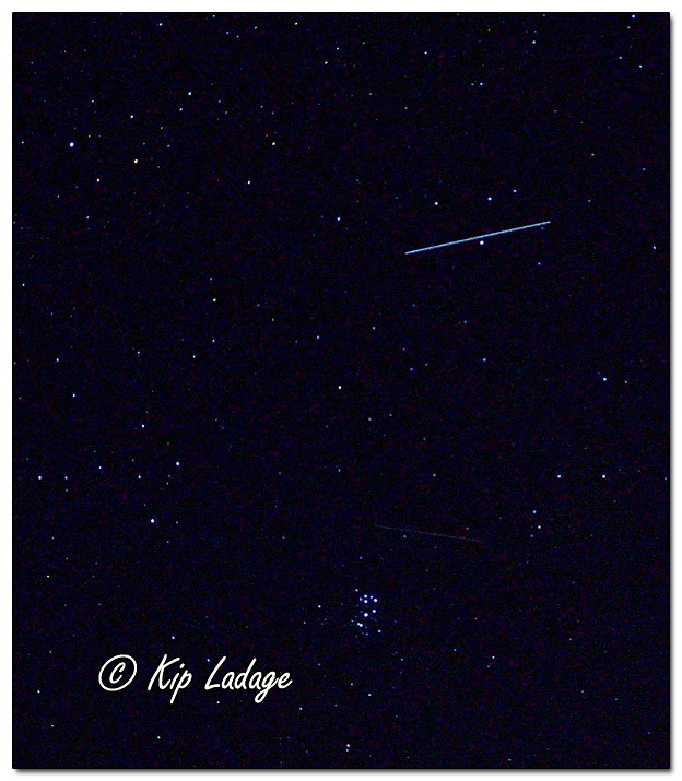 Night Sky with Meteor - Image 663147 (© Kip Ladage)